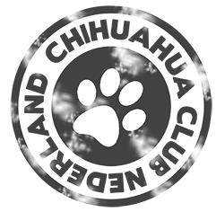 Chihuahua Club Nederland